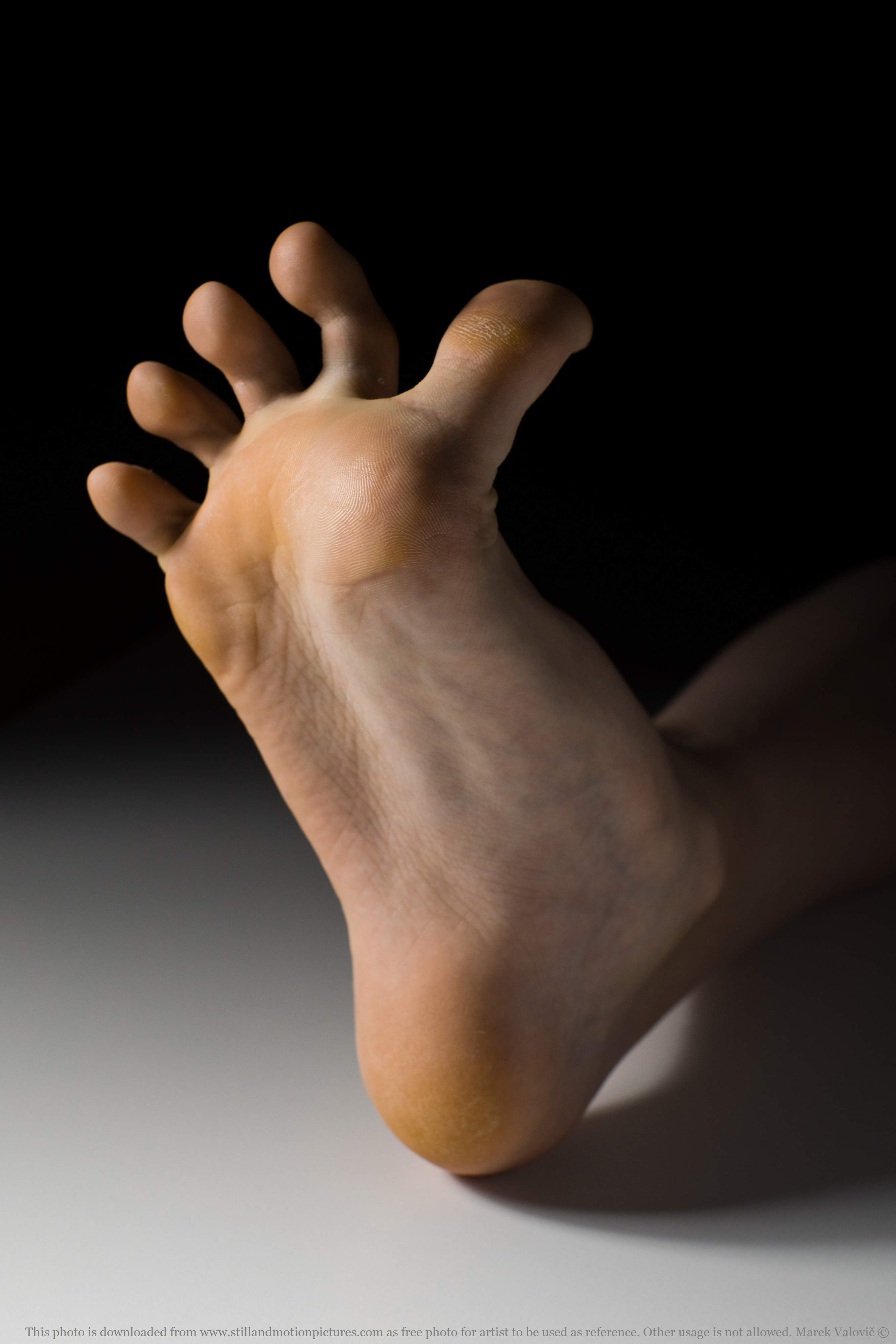 free foot anatomy - young woman's sole and toes - referefce photo for artists
