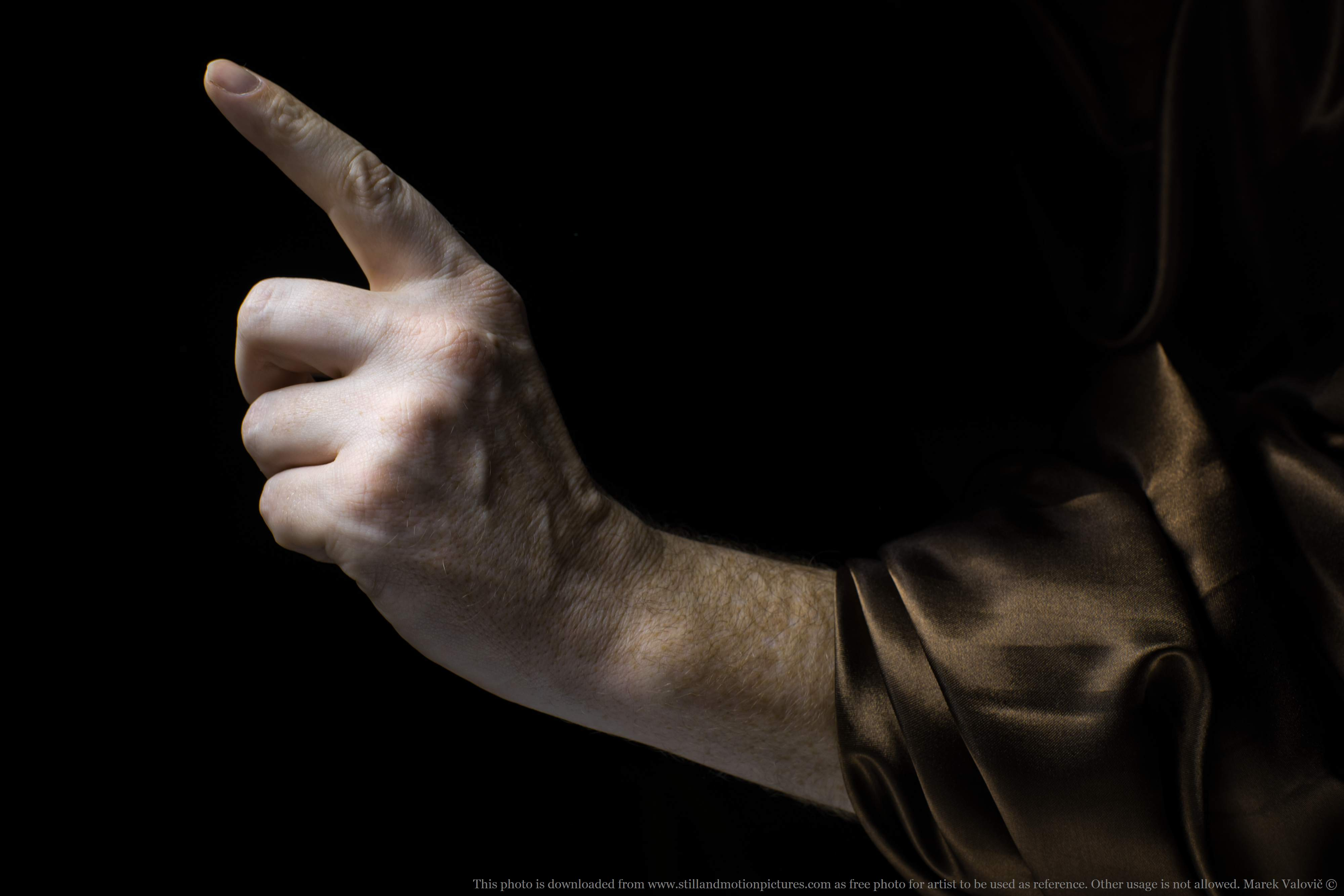hand anatomy - man's pointing finger - free referefce photo for artists
