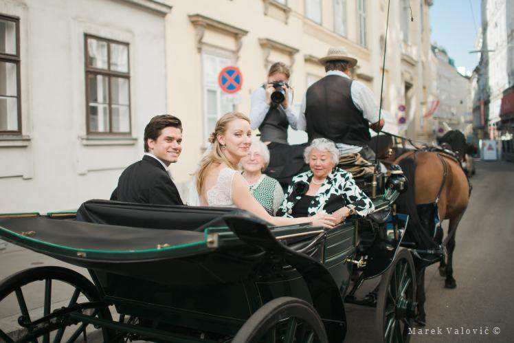 horses and carriage - wedding at Vienna