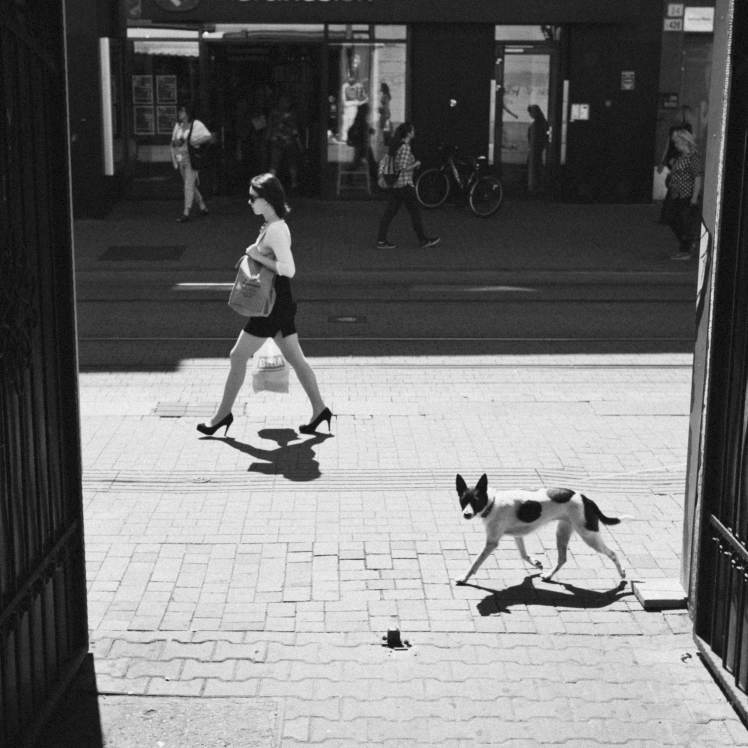 Photojournalistic street photography | lady and dog