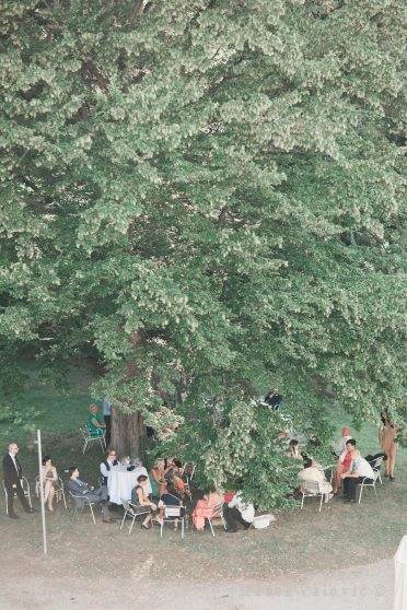 wedding guests sitting under the tree