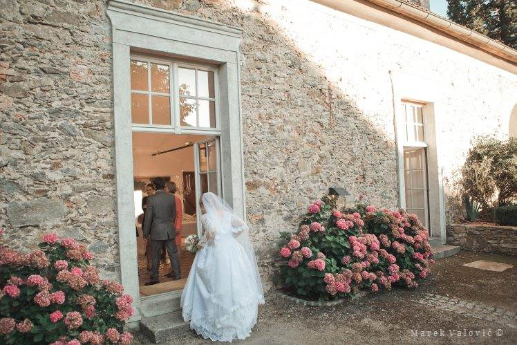 Fine art photo video prices Vienna wedding